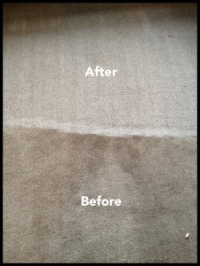 Before and after photograph of carpet cleaning job in Chislehurst