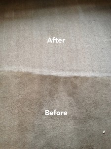 Carpet Cleaning before and after photograph in Bexley