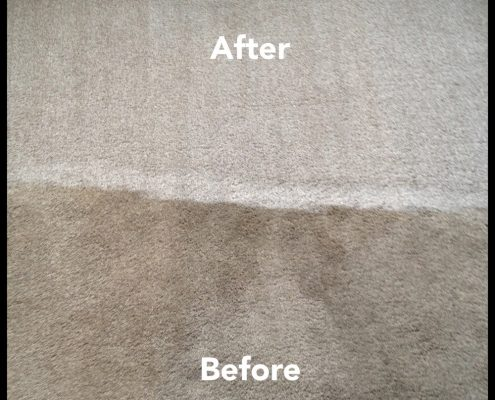Before-and-after-photograph-of-carpet-cleaning-job-in-Chislehurst (1)