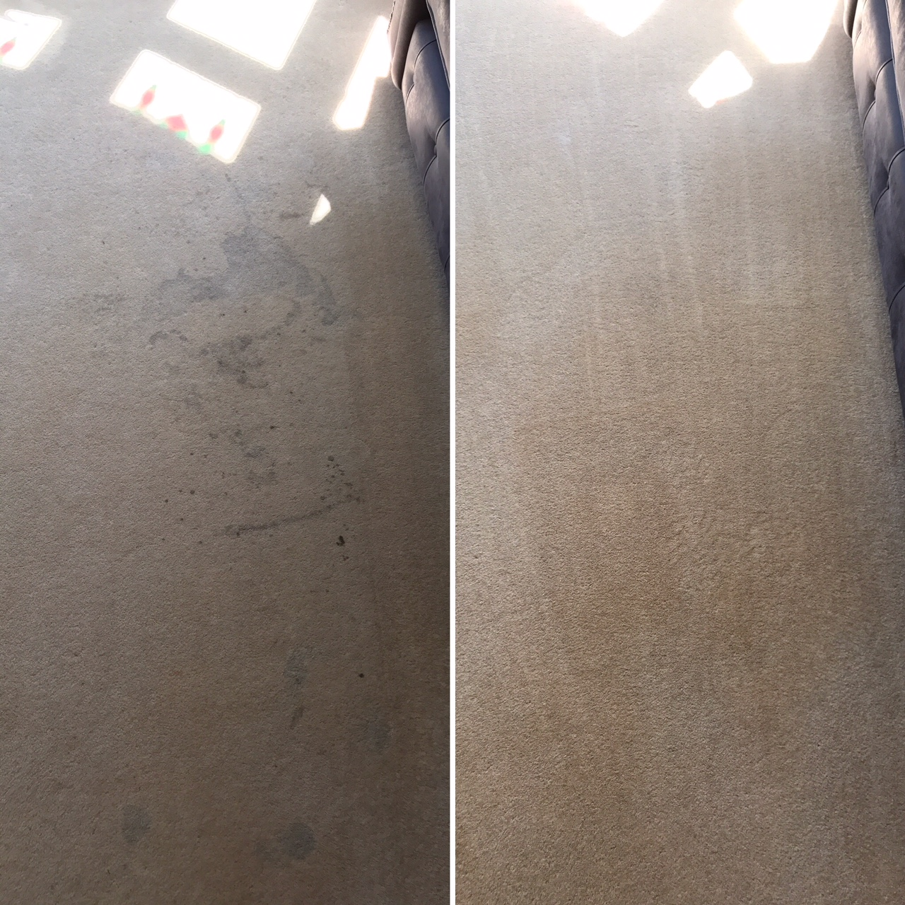 Carpet cleaning before and after